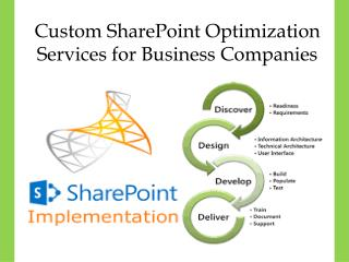 Custom SharePoint Optimization Services for Business Companies