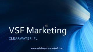 clearwater web design institute