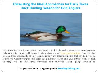 Excavating the Ideal Approaches for Early Texas Duck Hunting Season for Avid Anglers