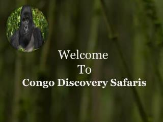 Gorilla Trekking Safaris in Congo