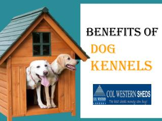 Benefits of Dog Kennels