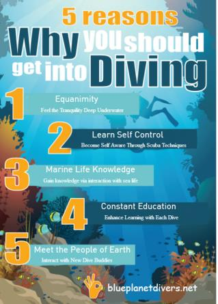 5 Reasons Why You Should Get into Diving