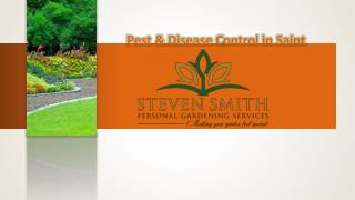Pest & Disease Control in Saint Helens UK