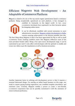 Efficient Magento Web Development Company Dallas
