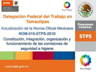 Actualizaci n de la Norma Oficial Mexicana  NOM-019-STPS-2010 Constituci n, integraci n, organizaci n y funcionamiento d