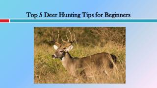 Top 5 Deer Hunting Tips for Beginners
