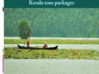 Best Kerala Family Tour Packages