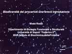 Biodiversit  dei procarioti:una breve introduzione    Mos  Rossi  Dipartimento di Biologia Funzionale e Strutturale Univ