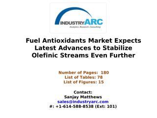 1. Fuel Antioxidants Market Set to Focus on Development of Fuel Stabilization Solutions