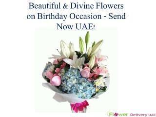 Beautiful & Divine Flowers on Birthday Occasion - Send Now UAE!