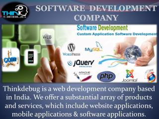 Thinkdebug is Best Web Development Company in Indore.