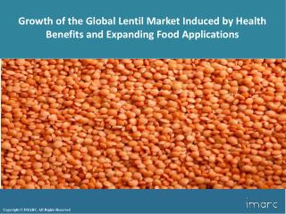 Global Lentil Market Report and Outlook 2017-2022