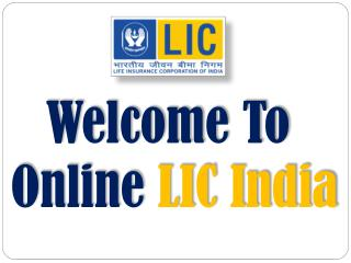 LIC study plan with best LIC term policy for 5 years