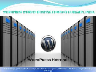 Wordpress Website Hosting Company