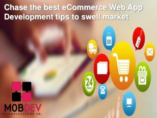 Chase the best eCommerce Web App Development tips to swell market