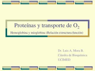 Prote nas y transporte de O2  Hemoglobina y mioglobina Relaci n estructura:funci n