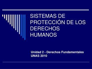 SISTEMAS DE PROTECCI N DE LOS DERECHOS HUMANOS
