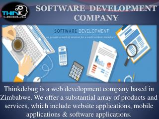 Thinkdebug is Best Web Development Company in Zimbabwe.