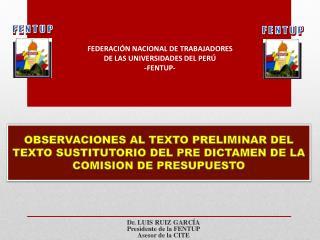 OBSERVACIONES AL TEXTO PRELIMINAR DEL TEXTO SUSTITUTORIO DEL PRE DICTAMEN DE LA COMISION DE PRESUPUESTO