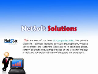 Best IT solutions services in USA