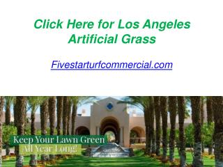 Click Here for Los Angeles Artificial Grass - Fivestarturfcommercial.com
