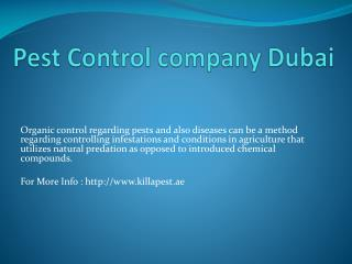 Pest Control company Dubai