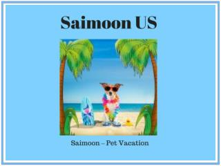 Tips of Dog Friendly Vacations - Saimoon