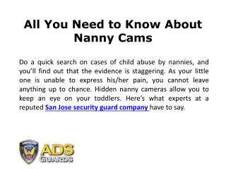 All You Need to Know About Nanny Cams