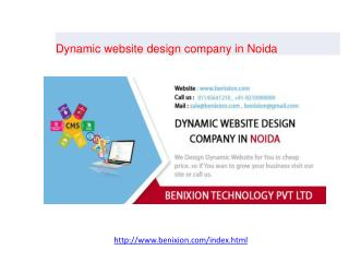 Dynamic website design company in Noida
