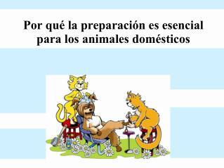 Por qué la preparación es esencial para los animales domésticos