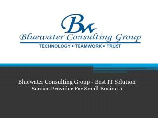 Bluewater Consulting Group - Best IT Solution Service Provider For Small Business