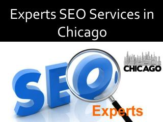 Experts SEO Services in Chicago