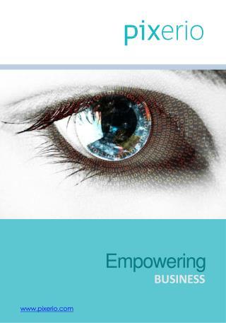 Pixerio Solutions Corporate company profile