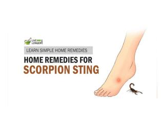 Best Home Remedies For Scorpion Stings