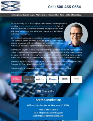 Cutting Edge Search Engine Marketing Services in New York - AMMA Marketing