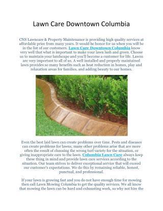 Lawn Care Services Florida