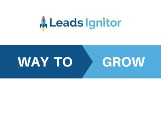Leads Ignitor | Digital marketing Agency/company/services