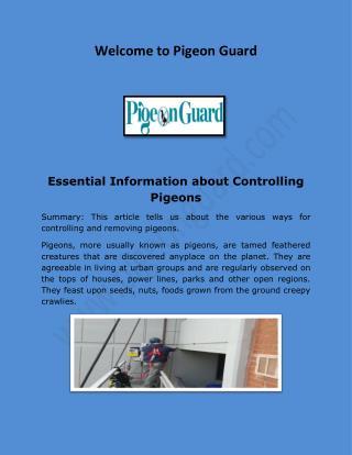 Bird Netting Suppliers, Bird Netting Canada