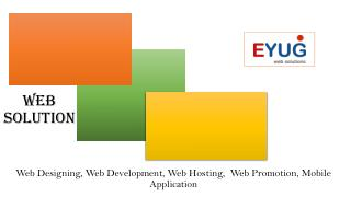 Web Hosting, Web Design & Development, web Promotion