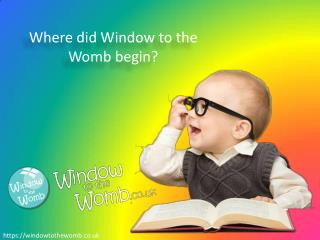 Where did Window to the Womb begin? - Window to the Womb