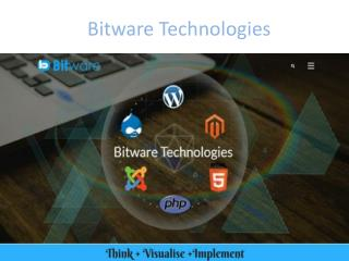 Bitware Technologies | A Fast Growing IT Company | PPT