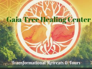 Ayahuasca Retreat Center at the Gaia Tree Center
