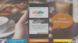 Do Push Notifications Actually Boost ROI?