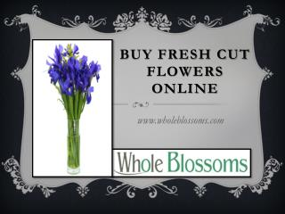 Buy Fresh Cut Flowers Online - Whole Blossoms