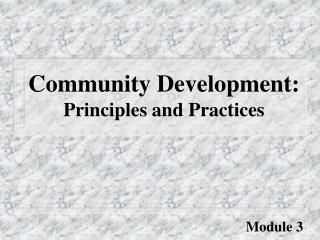 Community Development:  Principles and Practices