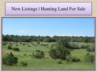 New Listings | Hunting Land For Sale
