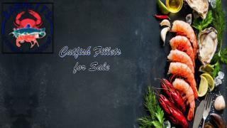 Catfish Fillets for Sale