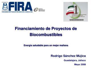 Financiamiento de Proyectos de Biocombustibles  Energ a saludable para un mejor ma ana