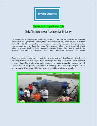 Fish Farm Advice & Tilapia Fingerlings And High Quality Fingerlings.pdf