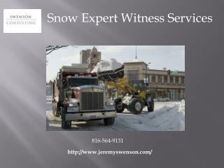 Snow Expert Witness Services